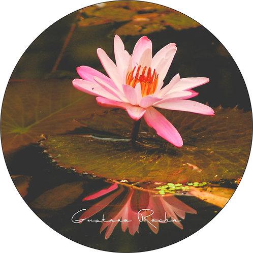 1 Porta Copos - Individual - Flor de Lótus Rosa -Gustavo Rocha