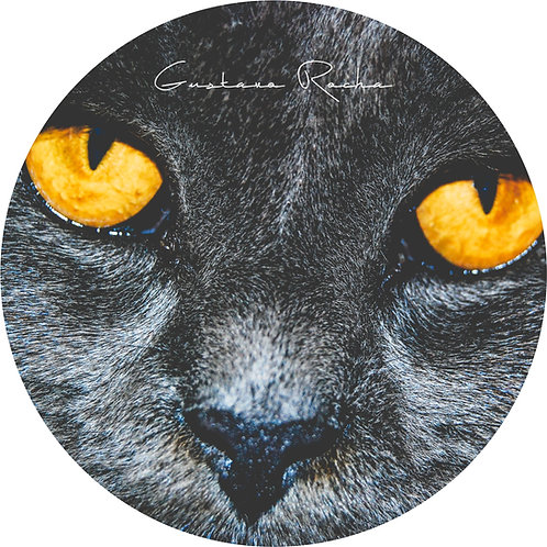 1 Porta Copos - Individual - Pet Gato - Gustavo Rocha