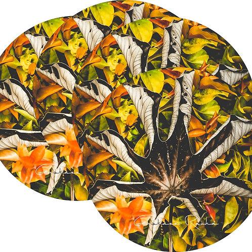 Kit Porta Copos, 4 Cerâmicas Coleção Natureza de Cores - Gustavo Rocha