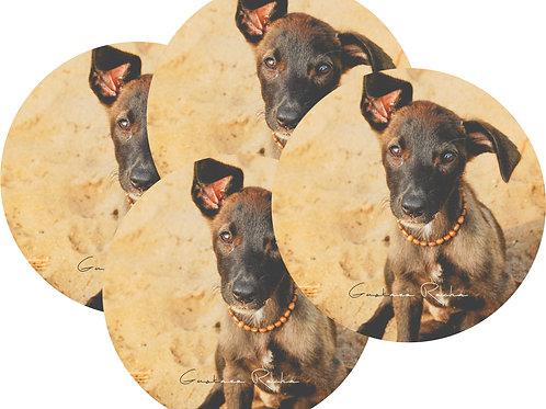 Kit Porta Copos, 4 Cerâmicas - Pet Cão - Gustavo Rocha