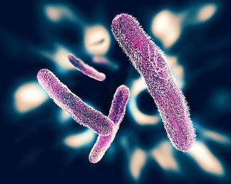 Antibacterial Masterbatch for Plastics