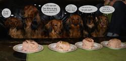 Egen hundekake