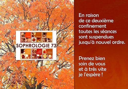 Site internet SOPHRO21.jpg