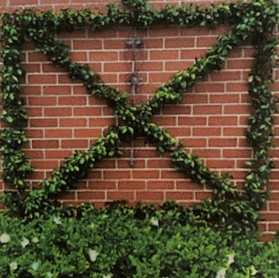 tips for working with a landscape architect X trellis