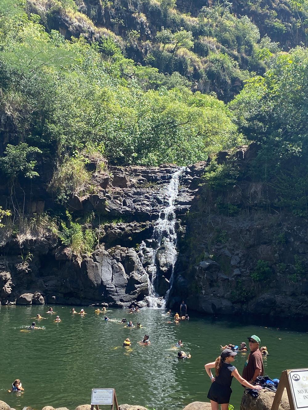 waimea valley, hawaii vacation during covid planning tips