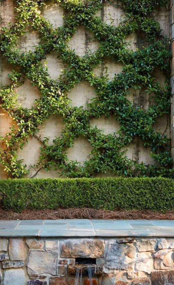 tips for working with a landscape architect X trellis with greenery