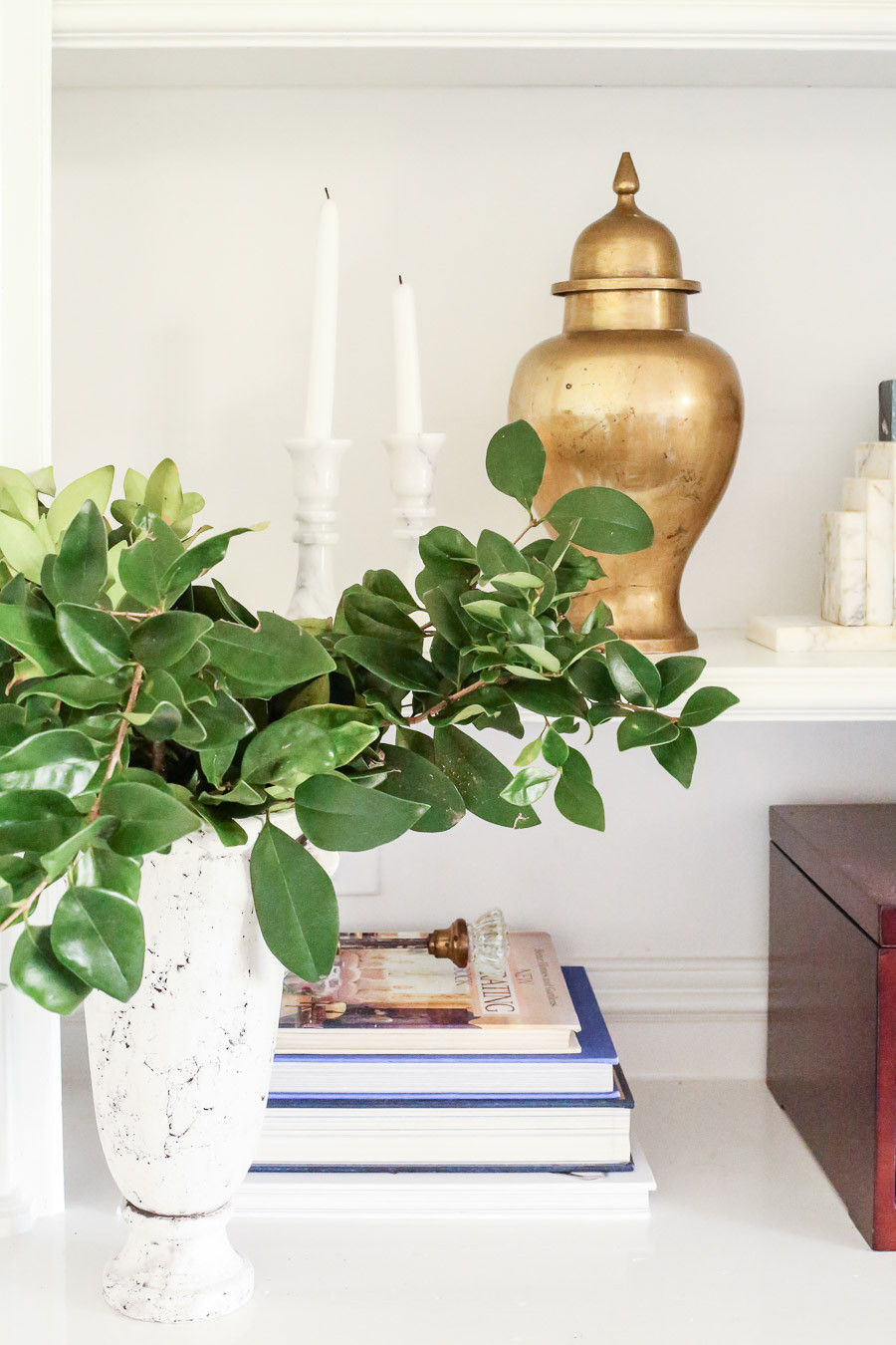 styled shelf, brass urn and green plant