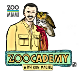 Zoo Miami.PNG