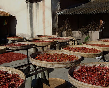 yunnan-private-tour-hot-peppers.jpg