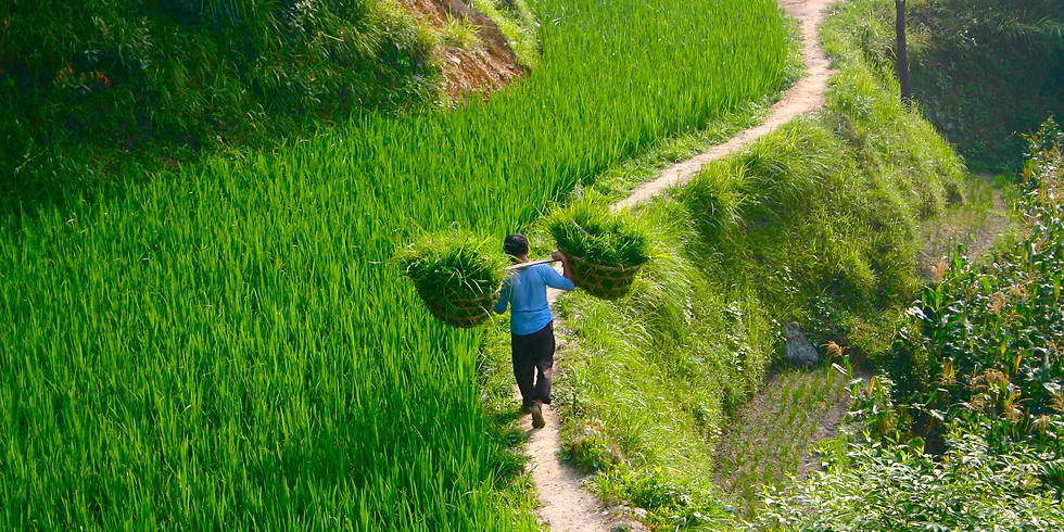 A Taste of China Ep.4: Sustainable Farming in Guangdong