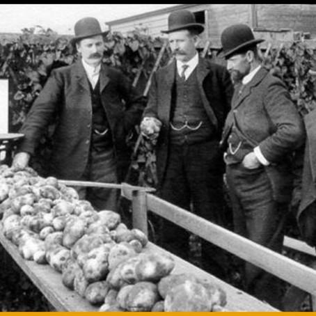 L'idée géniale d'Auguste Parmentier pour convaincre les Français de manger des patates.