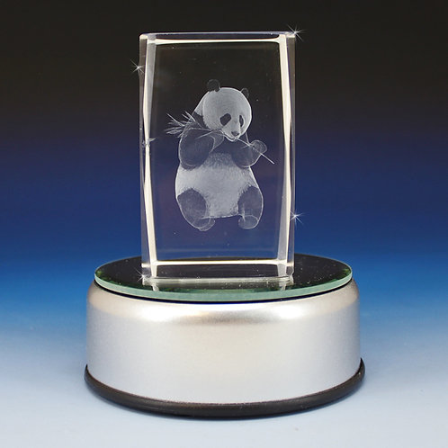 This 3D laser etched crystal block features a stun