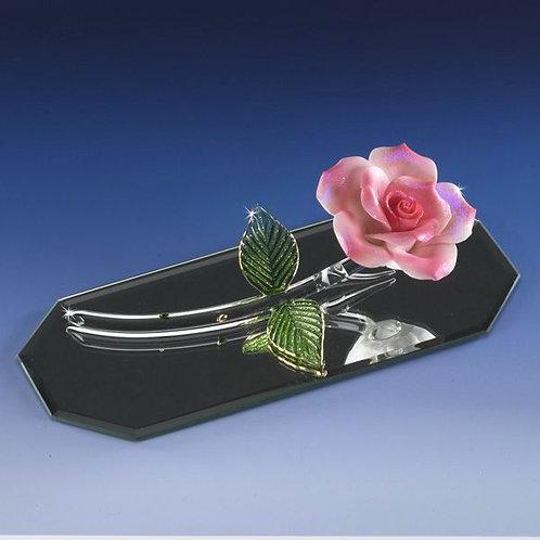 Pink Romance Rose