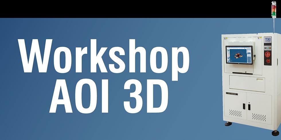 Workshop AOI 3D