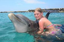 Dolphin suite 6.jpg
