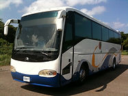 Jamaica bus.jpg