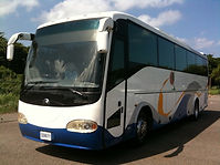 Buses de traslado de Talia travel