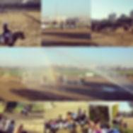 cavalli pony maneggio roma sud circolo ippico centro equestre festa fattoria scuola equitazione pony club