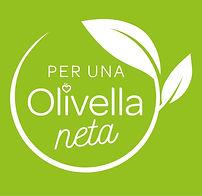 olivella neta.jpg