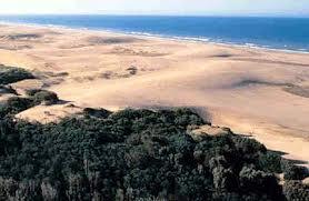 playas extensa