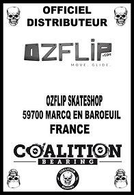 Coalition Bearing Distritution officiel OZFLIP SKATESHOP