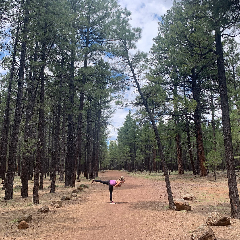 Williams, Arizona Community Yoga Class