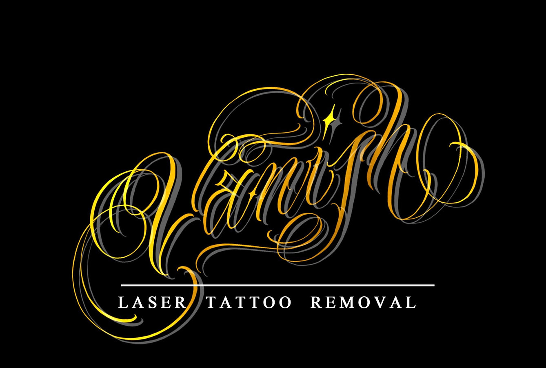 vanish logo mod_edited_edited.jpg