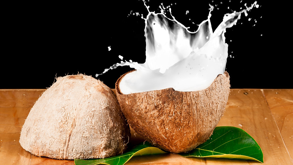Coconut Milk (17-19% Fat) x 400ml