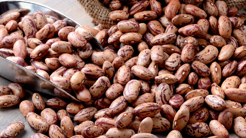 Pinto Beans (Dry) x 25kg