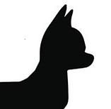 Chihuahua head.png