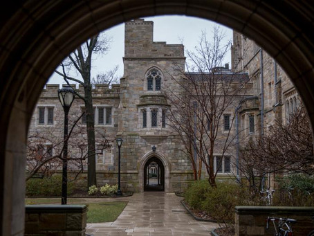 Yale University sagsøges for diskrimination af hvide og asiater