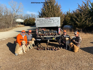 2020 Kansas Pheasant Hunt.jpg