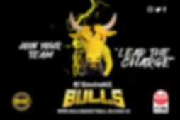 Bulls-ABSL-flyer4.png
