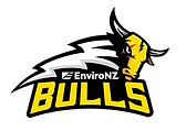 ENviroNZ 2021cFranklin_Bulls_Logo No Fra