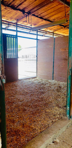 back barn 2
