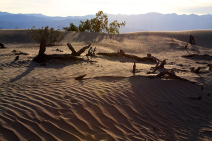 Dünen im Death Valley (Kalifornien)