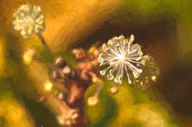 Blume van Gogh
