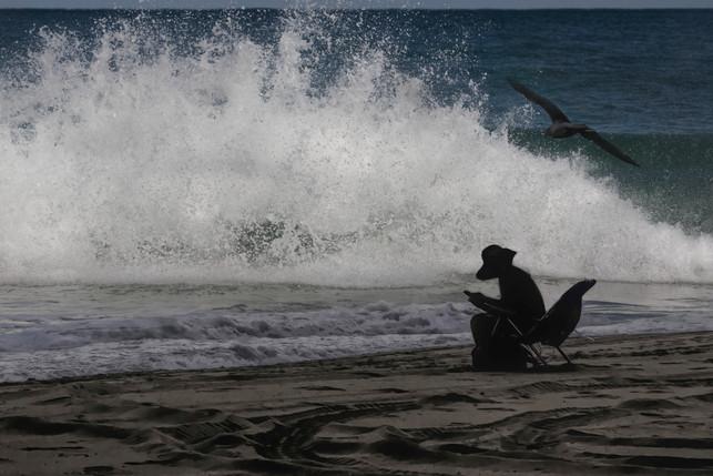 Frau und Möwe am Meer