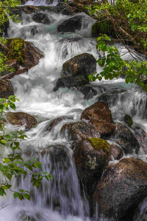 Juneau (Alaska)