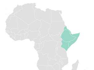 horn of africa image.png