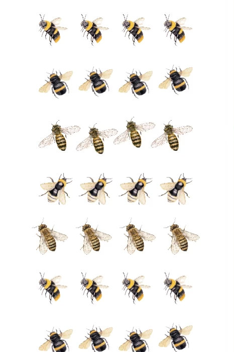 Bee Water Decal