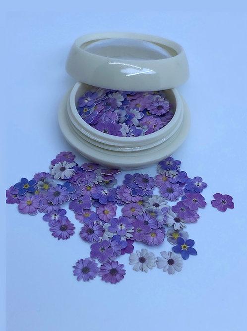 Encapsulated Dark Purple Flowers