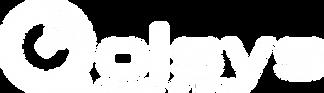 Qolsys Logo WHITE Large.png