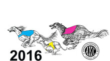 2016 AKC National Lure Coursing Championship