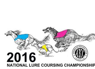 2016 AKC National Lure Coursing Championship