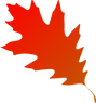 autumn-leaf-red-orange-hi.png