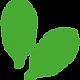 steviose-logo.png