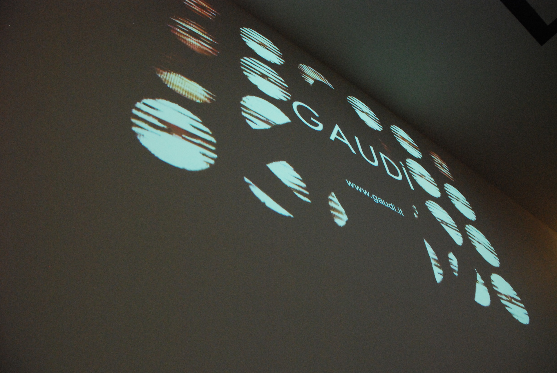 Gaudì Trade Spa - Modena