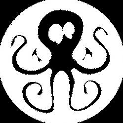 NAOT_logo_bianco.png