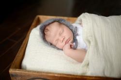 Best Newborn Photographer Kitchener
